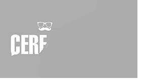 Création de Site Web Valence, Cerf à Lunettes Valence, Agence communication valence