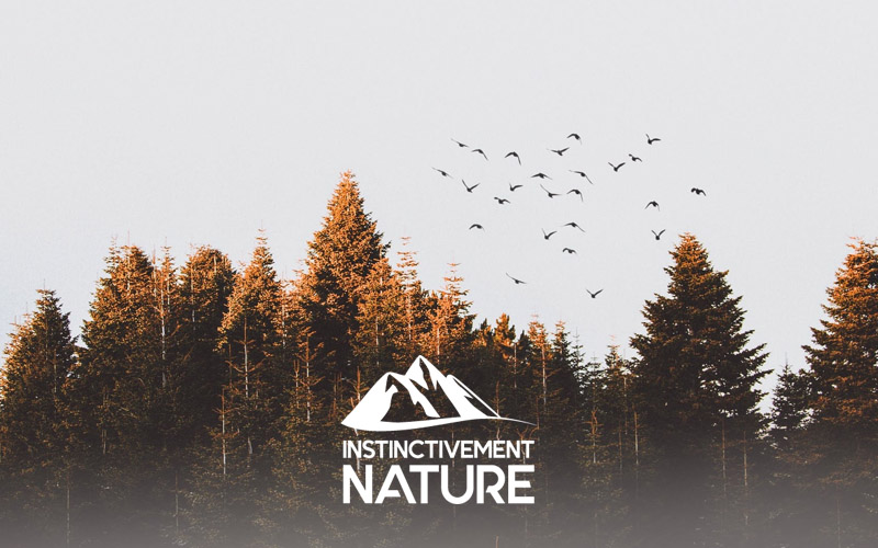 Instinctivement-nature